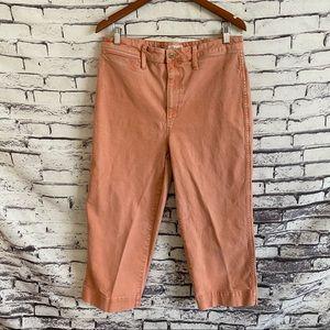 Madewell Tall Slim Emmett Wide Leg Crop Pants 32